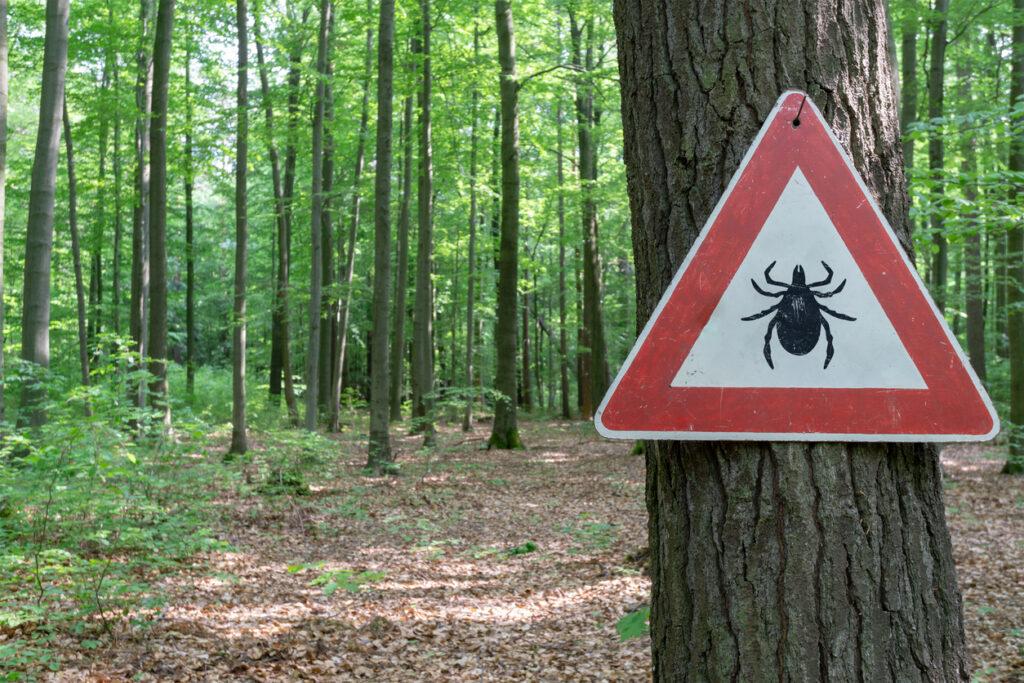 Lyme disease Trent Hills